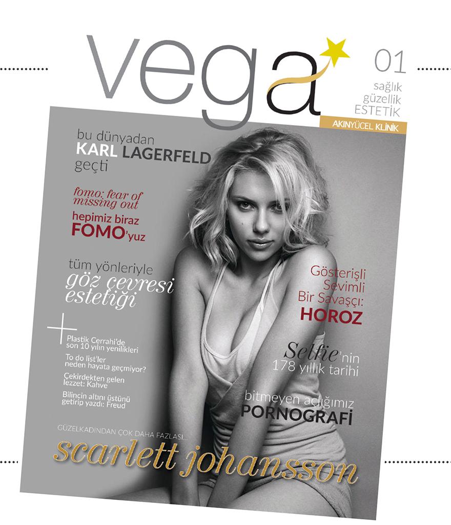 Vega Kasım 2020